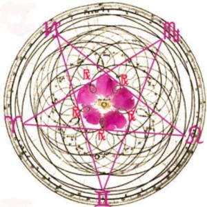 De pentakel (vijfhoek) beschrijft de baan van venus vanaf de aarde gezien en heeft de verhouding van de Gulden Snede in zich. De absolute maat van schoonheid.